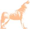 Loup Animal Totem